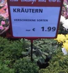 20091030_kraeutern
