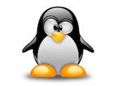 20131122_pinguin
